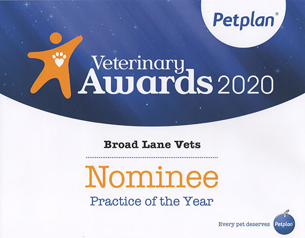 Pet Plan Awards 2020